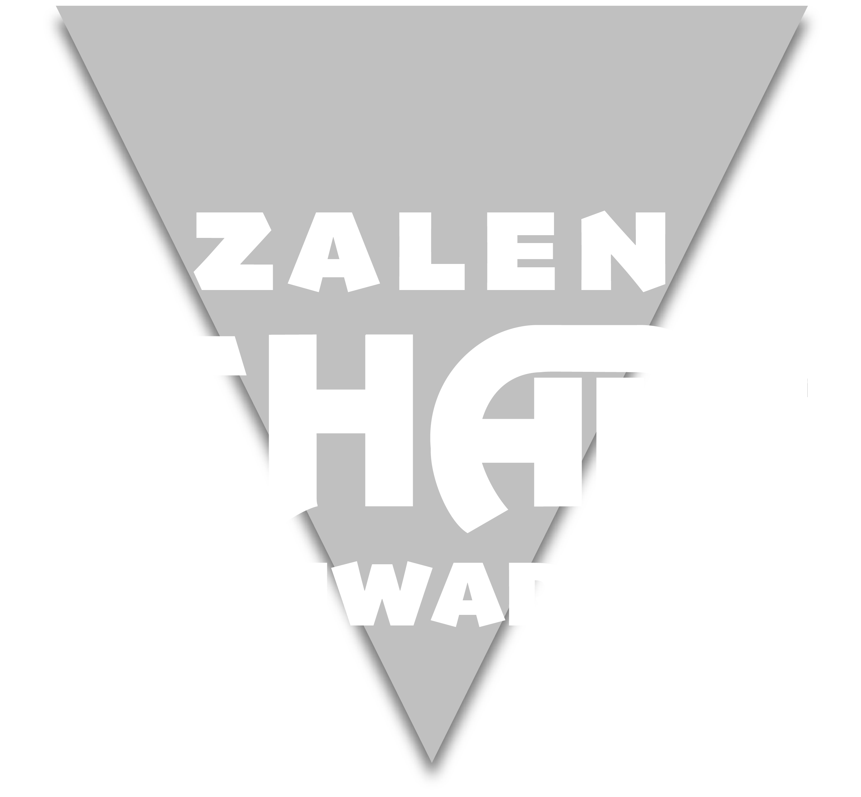 3fde52e88dc Benefiet: Captain Disaster + All Star Blues Band - Zalen Schaaf